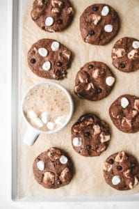 hot chocolate cookies veggiekins