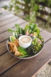 Veggiekins Vegan Guide to Bali