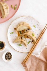 Vegan gluten free dumplings veggiekins