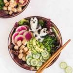 vegan garden poke bowl veggiekins