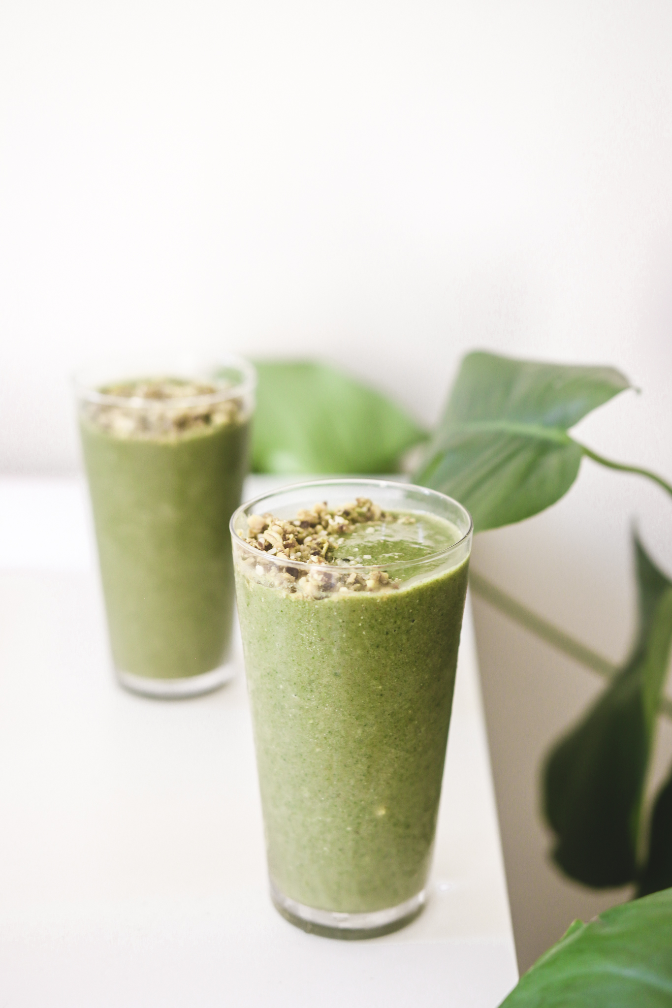 Everyday Green Smoothie Veggiekins