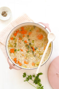 Chickpea and Rice Soup Veggiekins