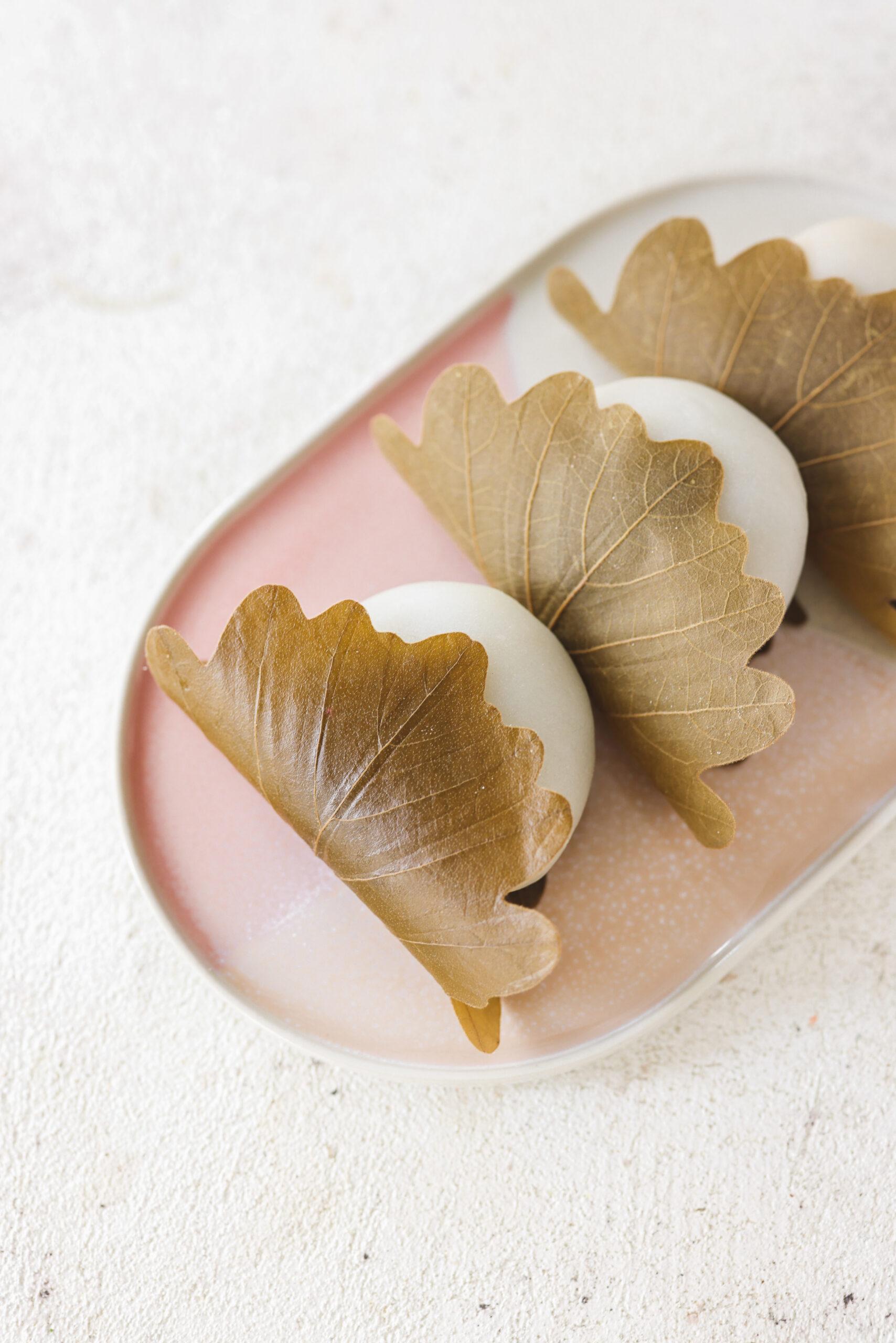Kashiwa Mochi (Japanese Rice Cake with Oak Leaf)