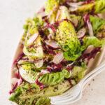 Radicchio Salad with Lemon Oil Dressing